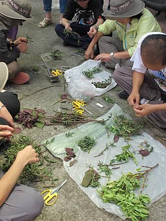 2013-08-09 110636山特教學生校外教學 (9).jpg