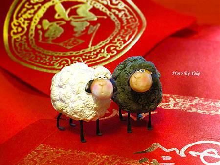 雙羊2MbyYoko