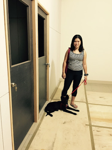 第三個月雲飛裝潢也帶狗.JPG