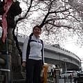 京都街頭 要往二年坂