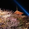 晚上的清水寺很漂亮,但是照相技術不好