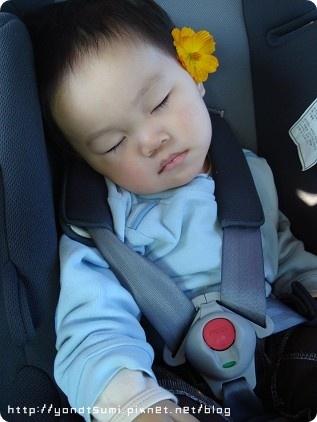 被放在汽座上熟睡還要照例來朵小花
