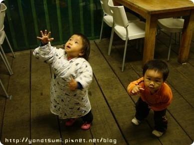 晚上去松竹園吃飯