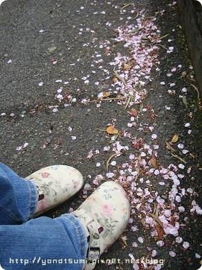 我也鞋也是很花