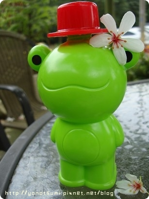 青蛙泡泡也戴一朵