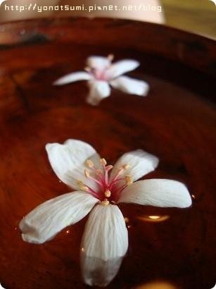 把花放在盆子裡很美