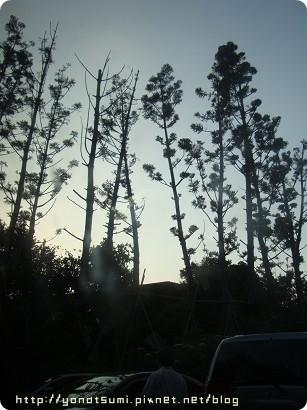 回程就開回台北五股看螢火蟲,這是準園