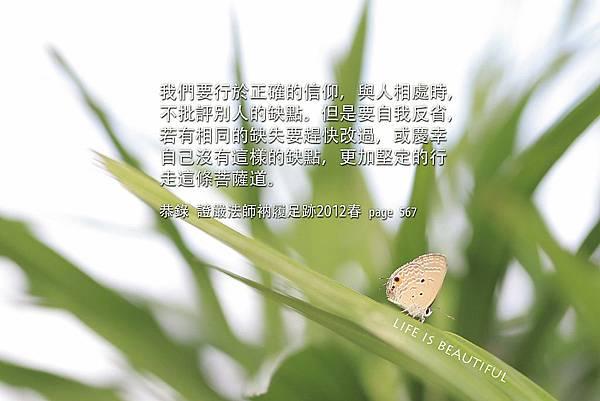 IMG_9773b