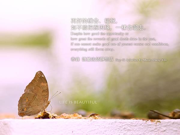 IMG_0330-jsy