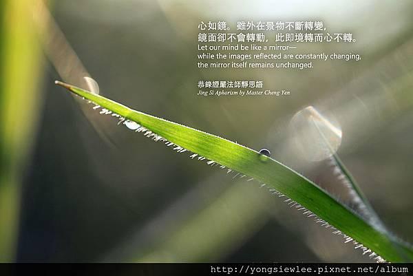 20140218_YSL01_1_047a
