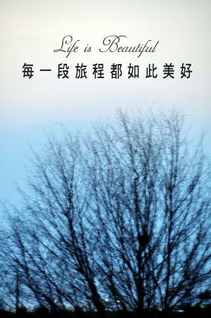 DSC_00941.jpg