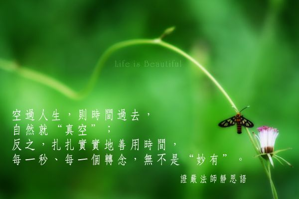 IMG_5823a.jpg