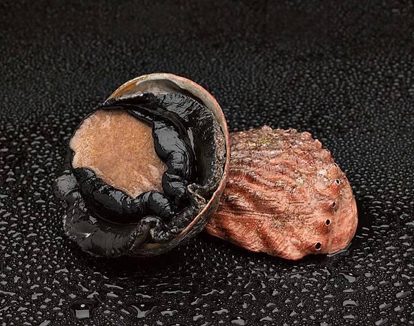 abalone_1304_014_a