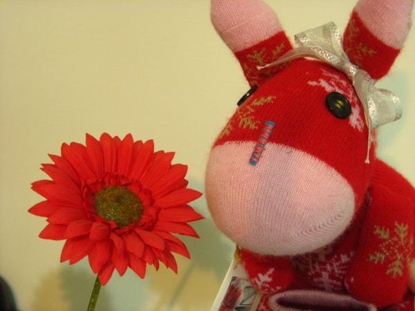 小紅與紅花