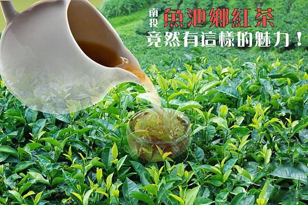 魚池鄉紅茶加壺加字-01