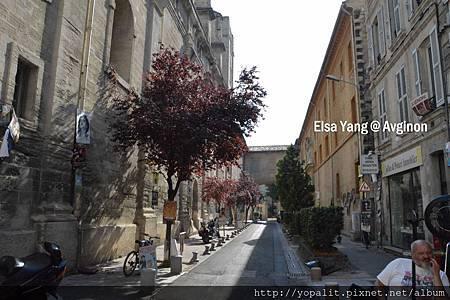 Avignong_0133.jpg