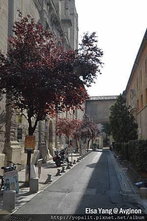 Avignong_0134.jpg