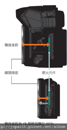 nex5d2.jpg