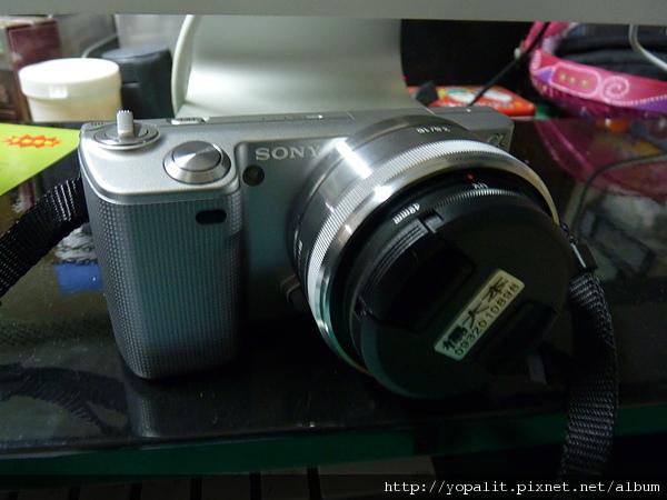 P1040122.JPG