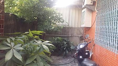 庭院-before