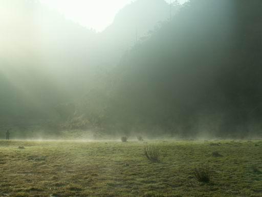霧氣凜人的松蘿湖