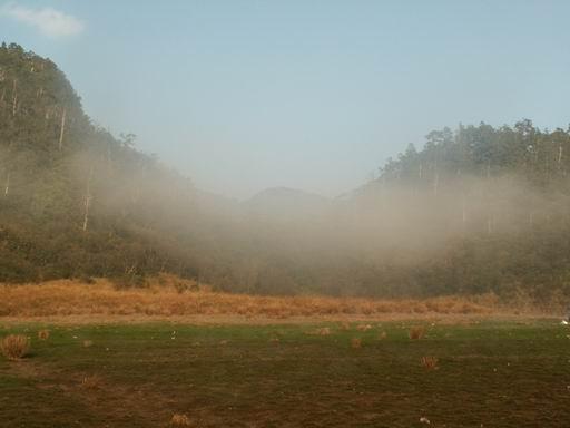 依依不捨的一片霧