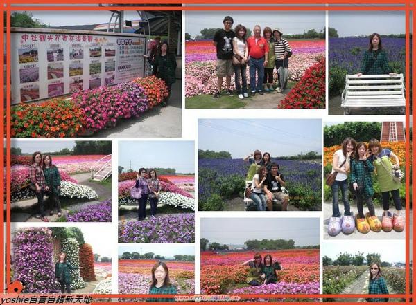 20100501中社觀光花市.jpg