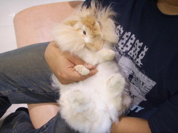 lulu在中華給爸爸抱