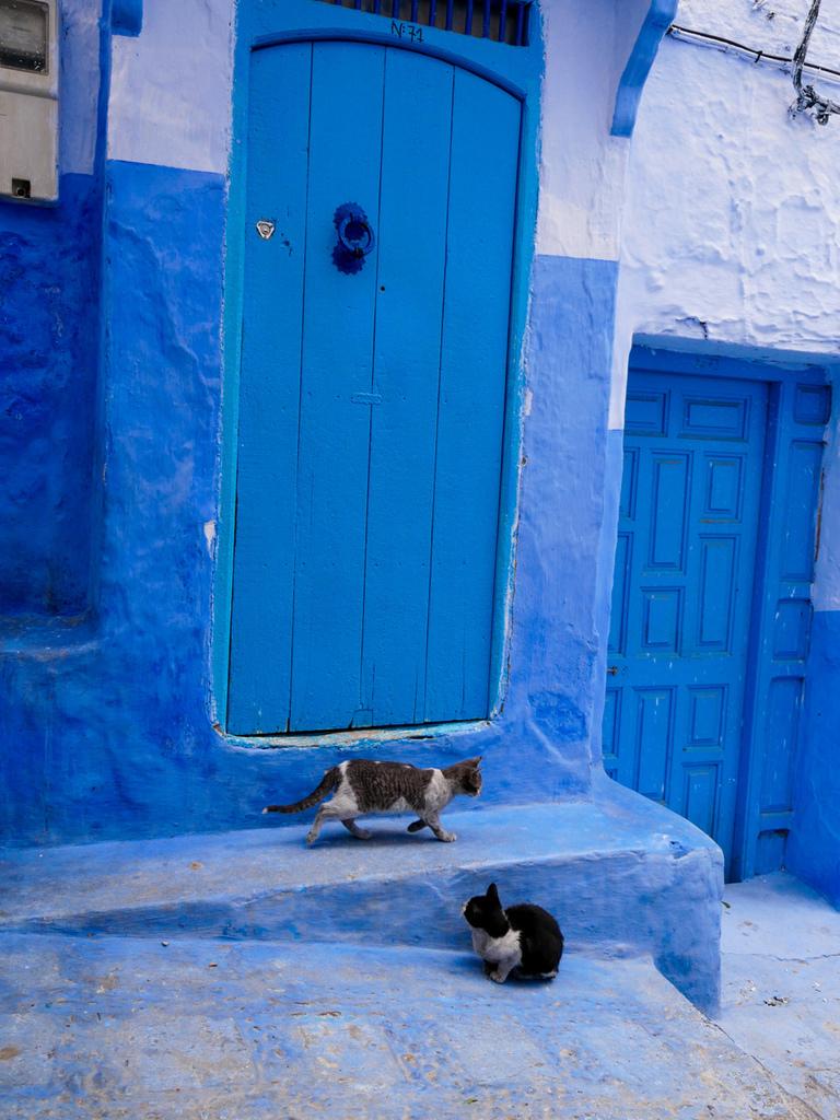 2018摩洛哥藍色城與FES-11.jpg