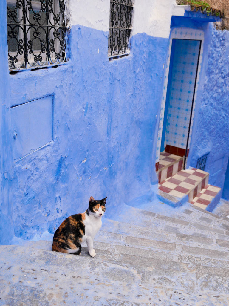 2018摩洛哥藍色城網誌用-11.jpg