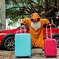 行李箱0-15.jpg