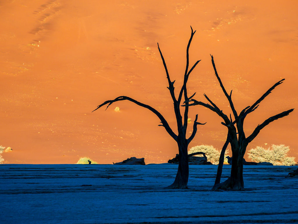 Namibia死亡谷-1120143.jpg