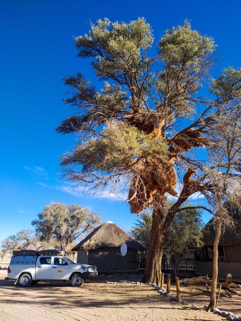 Namibia死亡谷-163118.jpg