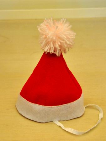 耶誕帽.jpg