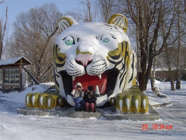 老虎不要吃我