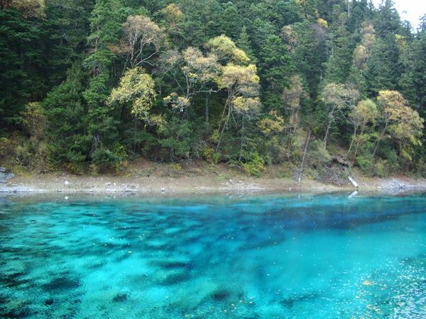 水中顏色都不同喔