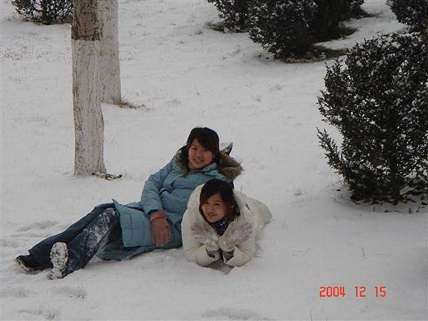 在雪上的感覺應該很冰
