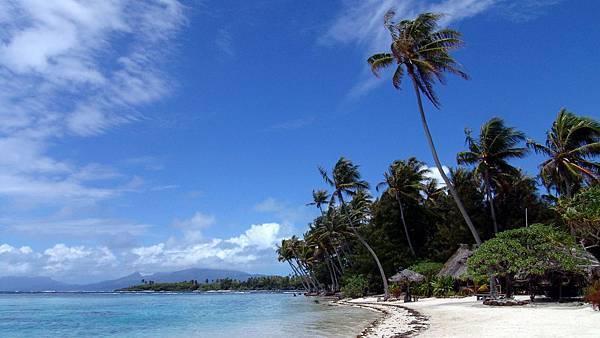 00423_polynesian_2560x1600