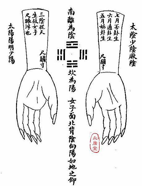 《難經集注》-12-十九難曰:南-2.JPG