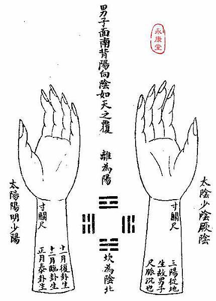 《難經集注》-11-十九難曰:南-1.JPG