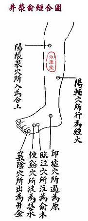 《難經集注》-66難-11.JPG