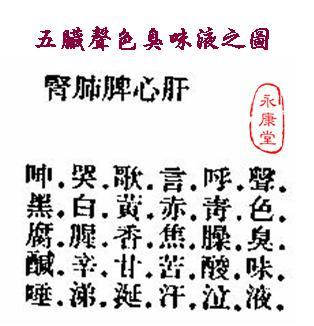 《扁鵲‧難經》-09-五臟聲色臭味液之圖.JPG