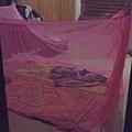 第一天只能克難式的鋪草蓆睡在地上,用衣服當枕頭。阮叔叔貼心的位我們準備了蚊帳,不然一定會被蚊子叮死。