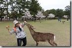 2016.04.06奈良公園餵鹿。-15