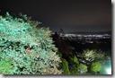 2016.04.06在奈良民宿的晚上,由房間就可欣賞到夜櫻的美。