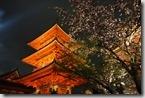 2016.04.07清水寺的夜櫻。-1