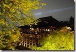 2016.04.07清水寺的夜櫻。-9