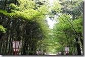 2016.04.08由醍醐寺去蹴上鐵道途中景點。-3