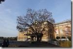 2016.04.08平安神宮附近有圖書館,周遭的風景。-6