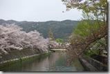 2016.04.08京都美術館、平安神宮附近風景。-3